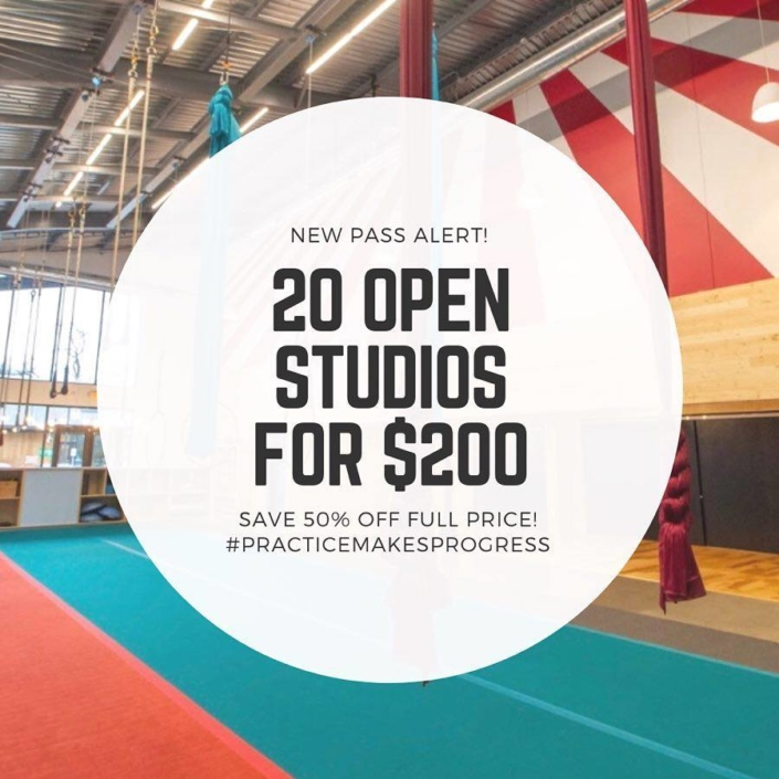 open studio deal - 20 for $200