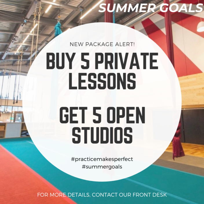 summer goals private lesson package - buy 5 private lessons, get 5 open studios for free